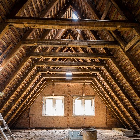 mamba Holzwurmtod Dachstuhl gegen Holzwurm behandeln und schützen