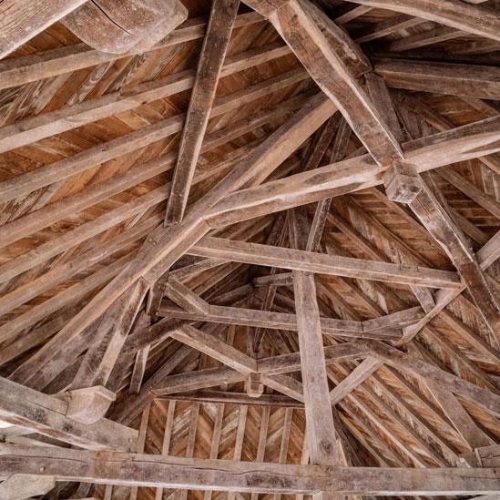 mamba Holzwurmtod Dachkonstruktion gegen Holzwurm behandeln und schützen